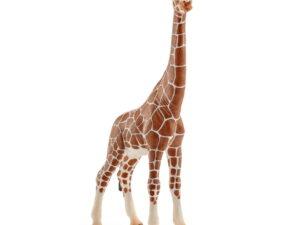 Schleich Giraffe Female-0