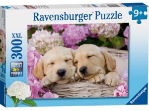 Ravensburger Spirit 300 Piece Puzzle