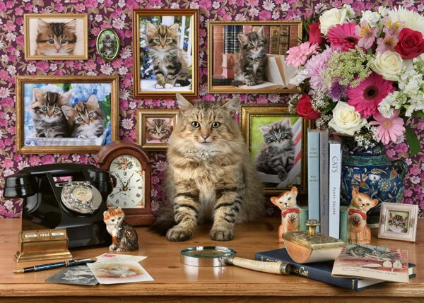 Ravensburger My Cute Kitty 1000pc