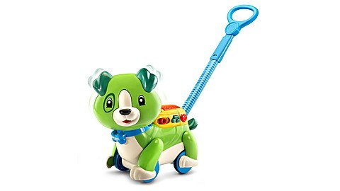 Leap Frog Step and Sing Scout
