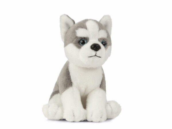Living Nature Husky Puppy Dog AN445 Plush Soft Teddy Toy