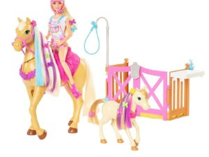 Barbie® Groom 'n Care Playset with Doll, 2 Horses & 20+ Accessories – GXV77